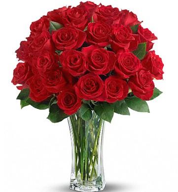 Love and Devotion Roses Vase